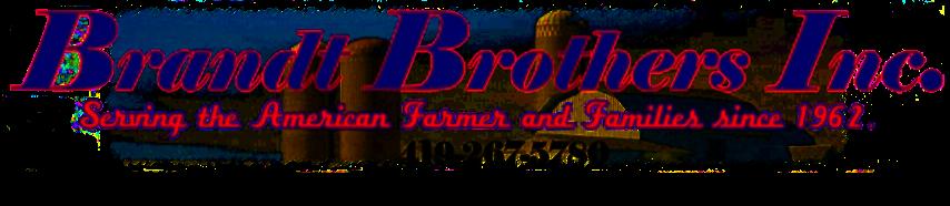 Brandt Agriculture Logo